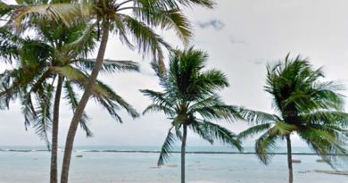 Hotéis na Praia do Francês, Alagoas